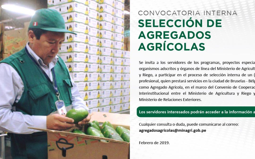 Convocatoria Interna: Selección de Agregados Agricolas