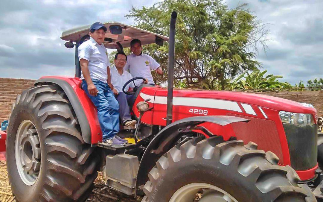 MINAGRI apuesta por cultivo de frijol caupí en Lambayeque