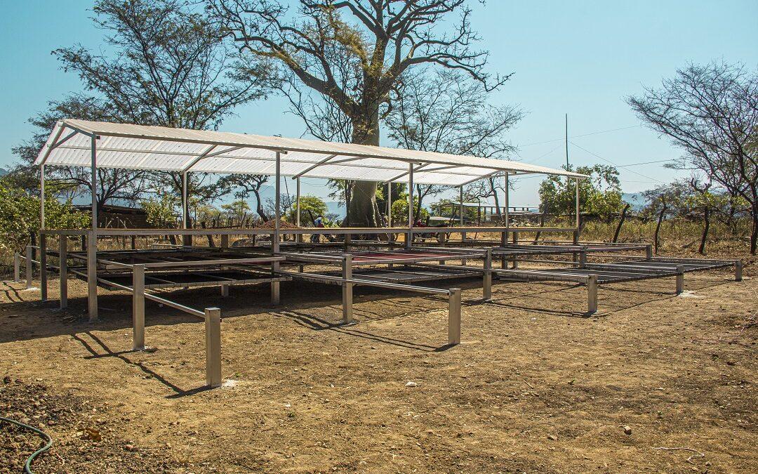 MINAGRI: Productores de cacao de Loma Larga Baja reciben módulos de fermentación y secado de cacao