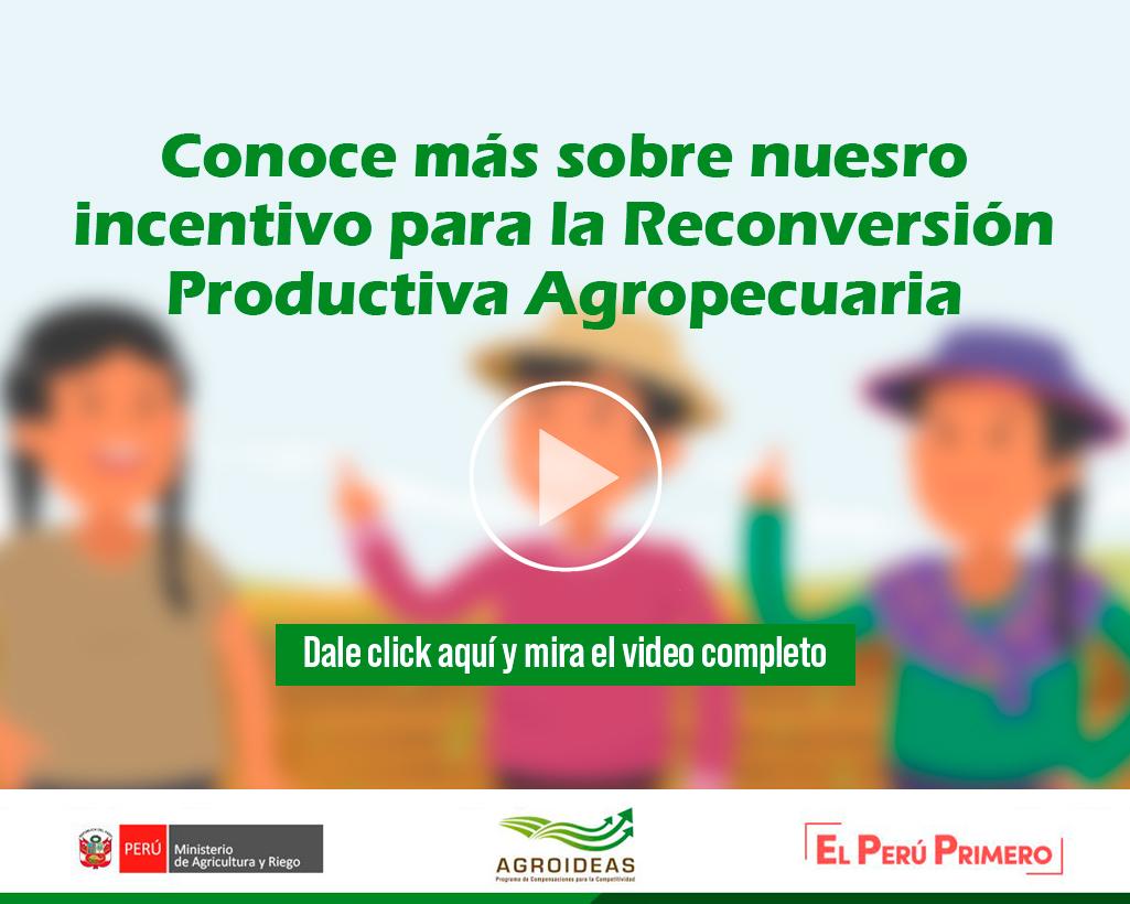 Videos PRPA